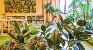 library-plant-living-montessori