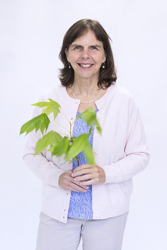 Teresa Angeles