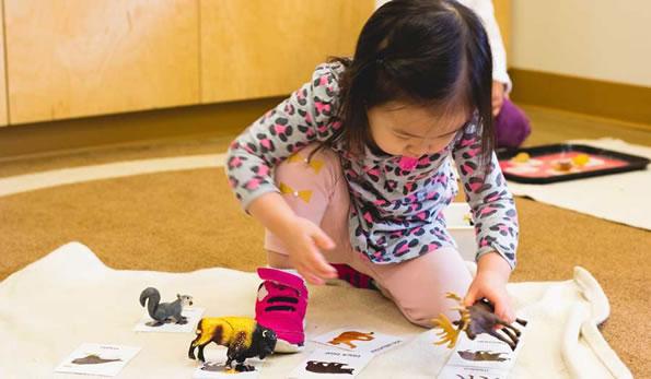 Montessori School Toddler Doing Animal Matching Activity